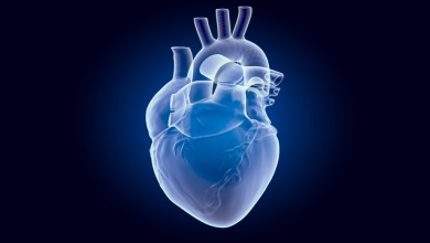 Why, When and How Should Clinicians Use Physiology in Patients with Acute Coronary Syndromes?