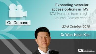 Expanding Vascular Access Options in TAVI