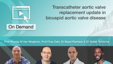 Transcatheter aortic valve replacement update in bicuspid aortic valve disease